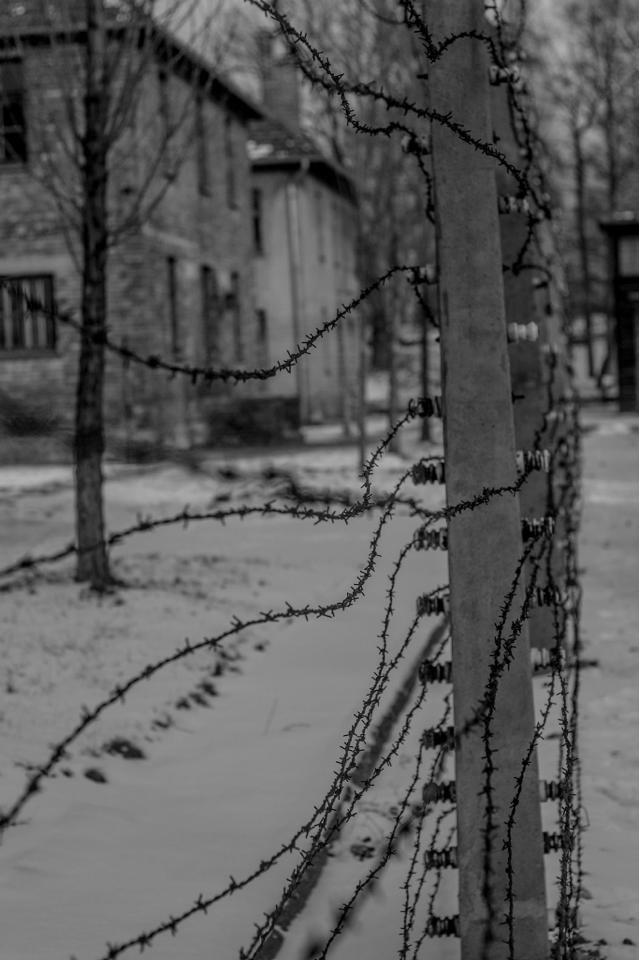 Auschwitz /  Kini Ramos