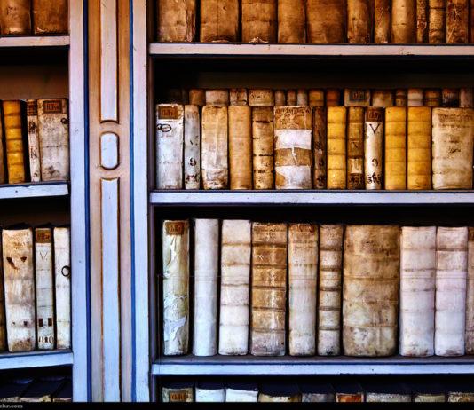 Books / Moyan Brenn