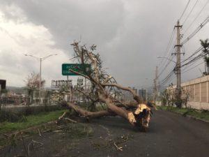 Imatge d'una avinguda de San Juan de Puerto Rico / Israel M. Ayala
