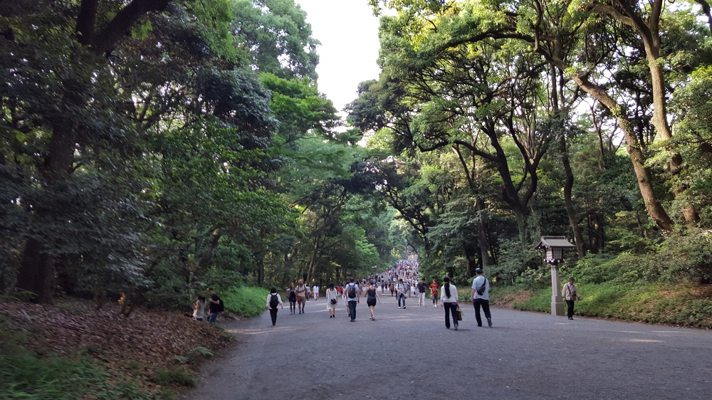 Boscos del santuari