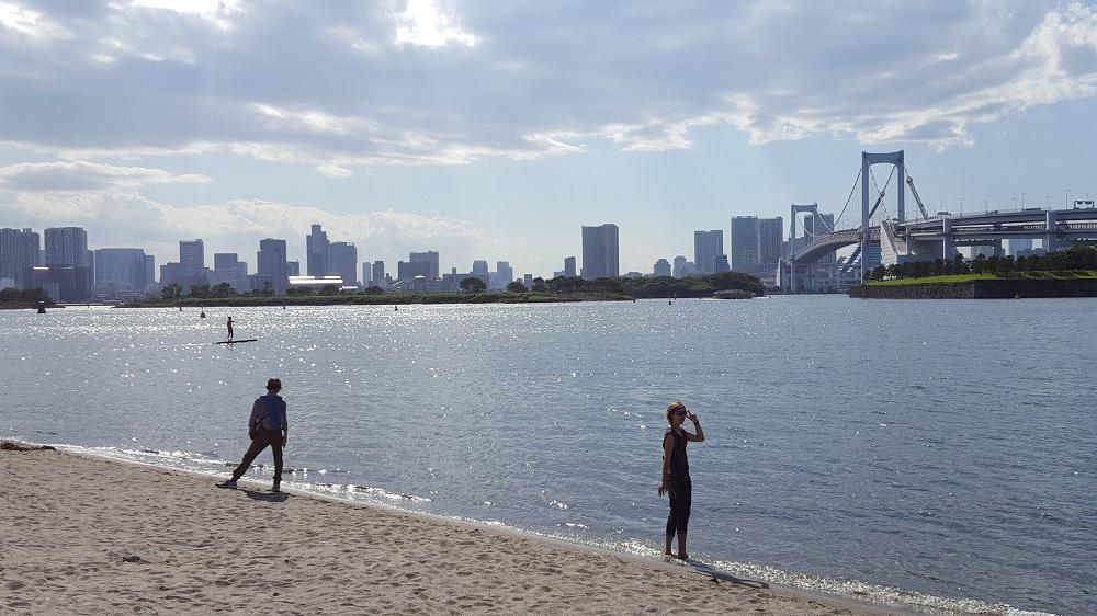Vistes de l'skyline des de la platja de l'illa